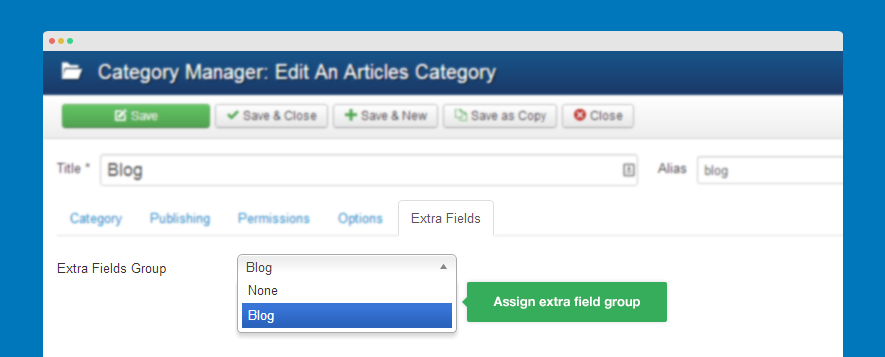 Assign extra field group for category
