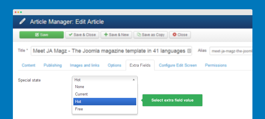 select extra field value for article