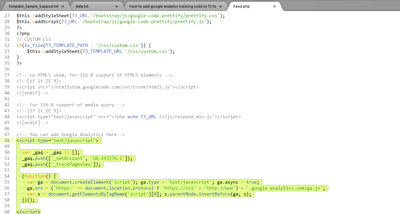 How to add google analytics code to T3 Framework(t3