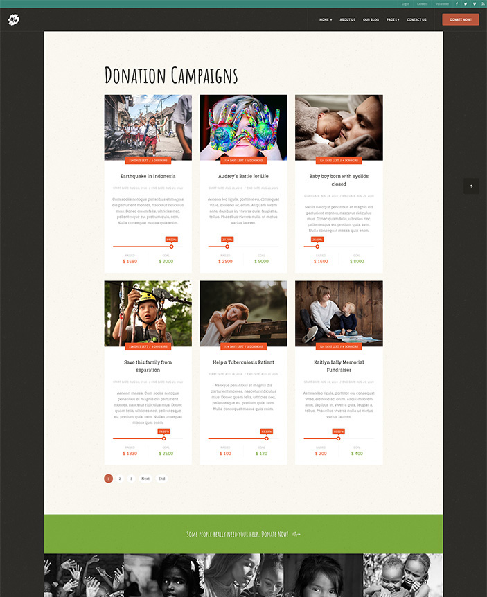Joomla template for donation