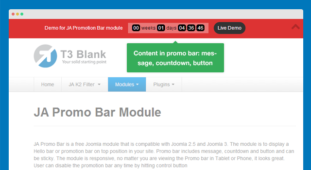 Flexible content in Promotion bar