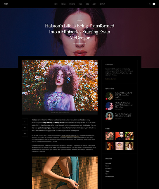 Blog detail page Joomla fashion template - JA Aiga