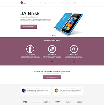 business Joomla template - JA Brisk violet theme