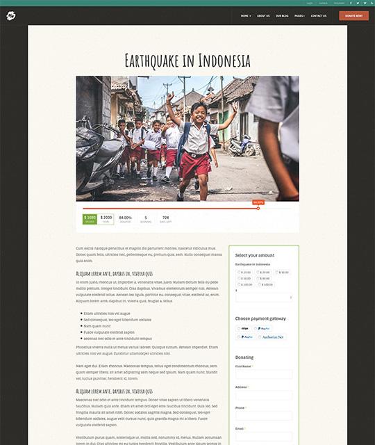 Donation campaign detail Joomla - JA Donate