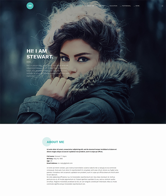 Resume Portfolio Joomla Template homemade model - JA Resume