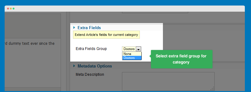 Select Extra Field Group in Category