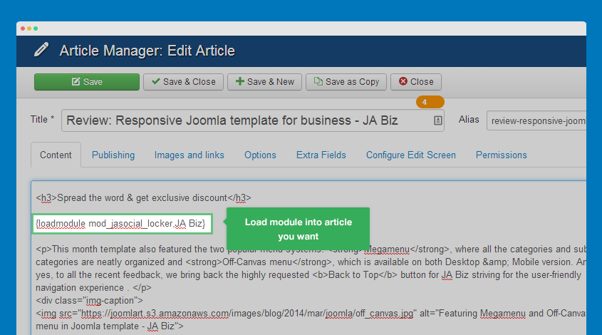 load module into article